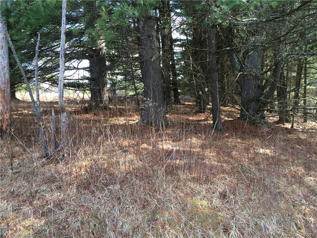 Co Road 23 Narrowsburg, NY 12764 - MLS #: 4842498